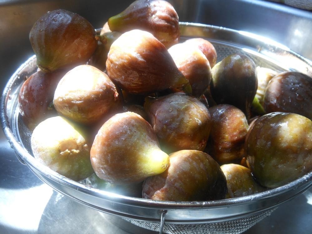 Fresh Fig Newtons (2/6)